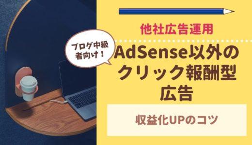 保護中: 【ブログ中級者向け】AdSense以外のクリック報酬型広告の運用方法について